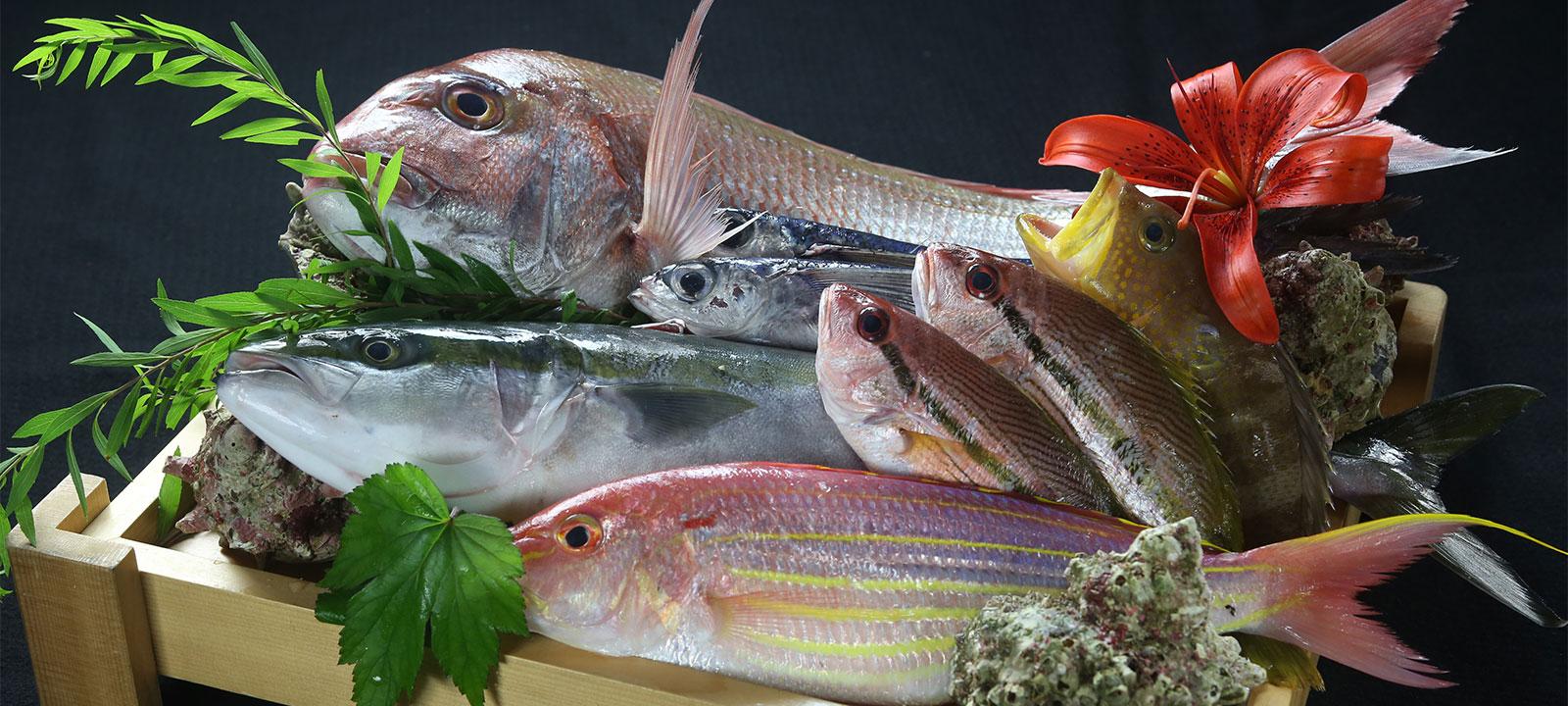 浜田港で仕入れた新鮮な魚
